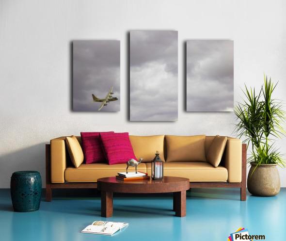 Flyingwarbird Canvas print