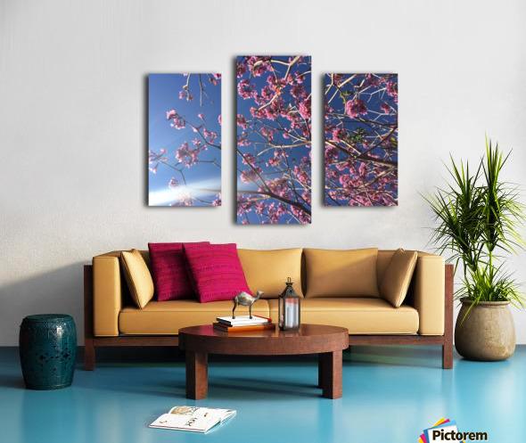 Anime cherry blossom xx Canvas print
