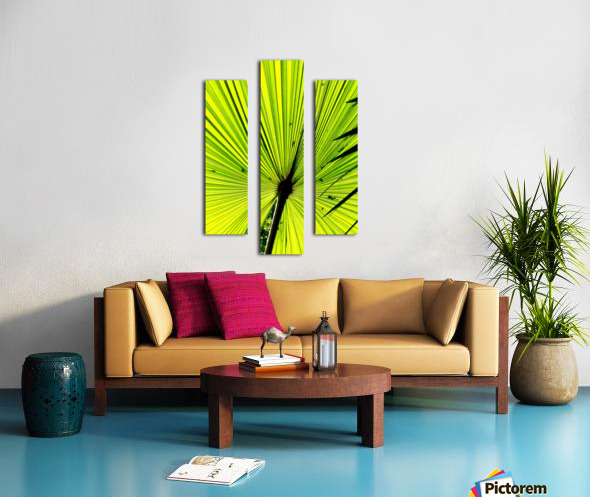 IMG_5170 copyaa Canvas print