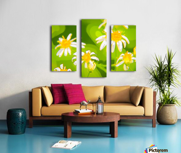 My Daisies - Mes Marguerites Canvas print