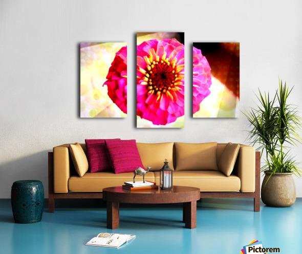 Rainbow daisy Canvas print