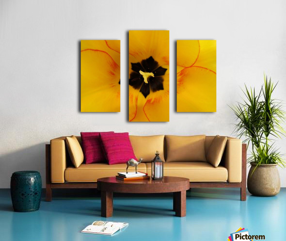 DSC00675 Canvas print