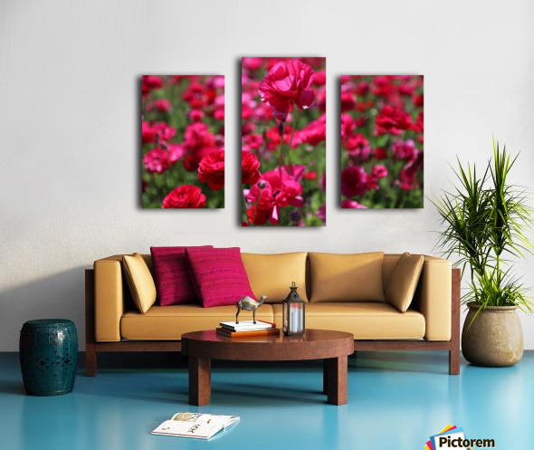 Never-ending Roses  Canvas print