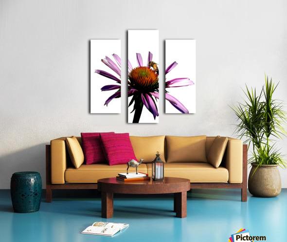 Daisy Bee Canvas print