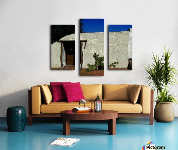 Cactus & Door Canvas print