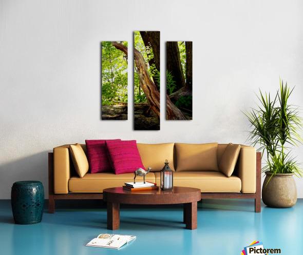 Wooden I   copy Canvas print