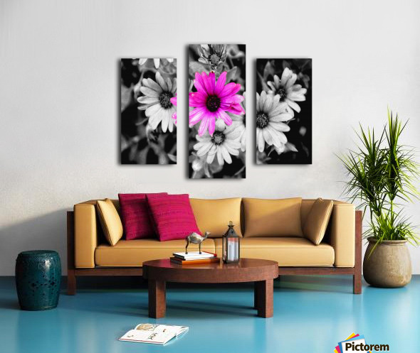 One Colored Daisy Canvas print