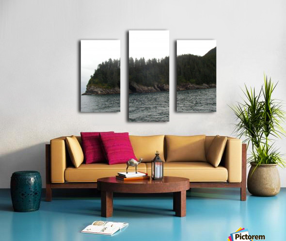 Point with pines Canvas print