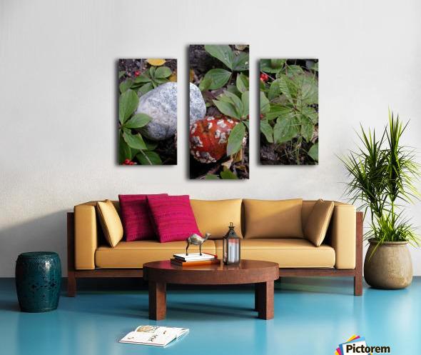 Red Mushroom & Rock Canvas print