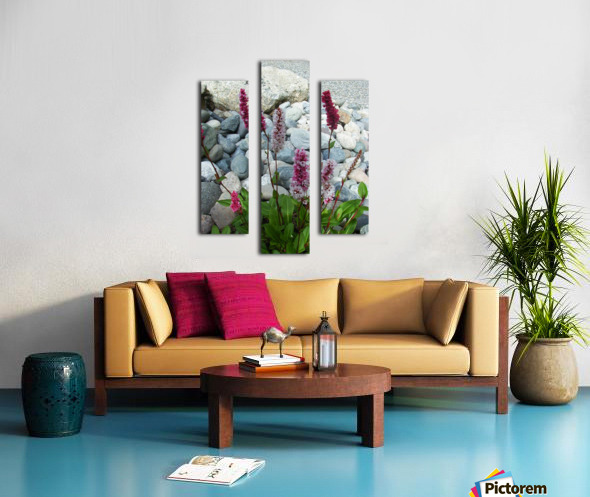 Red Flowers in Rocks Canvas print