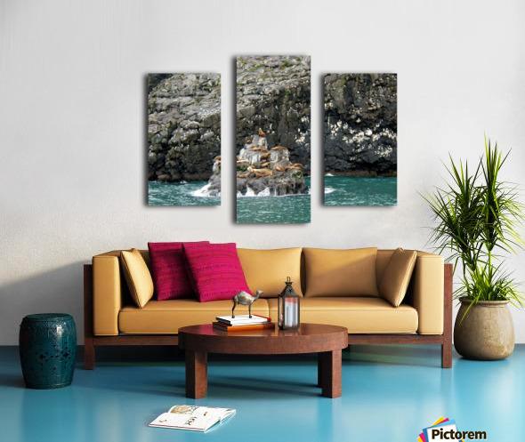 Seals Canvas print