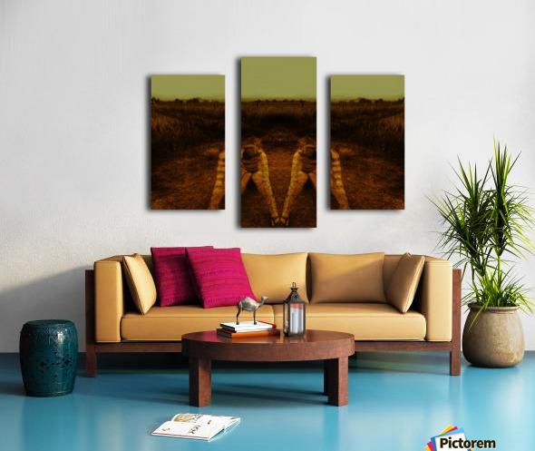 A (2) Canvas print
