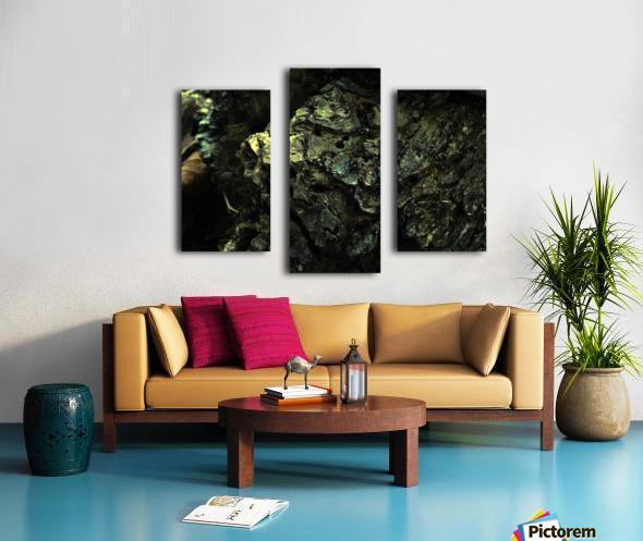 B (3) Canvas print