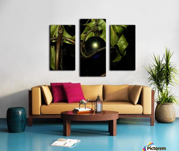 sofn-DD9E757F Canvas print