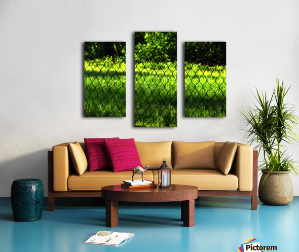 C (2) Canvas print