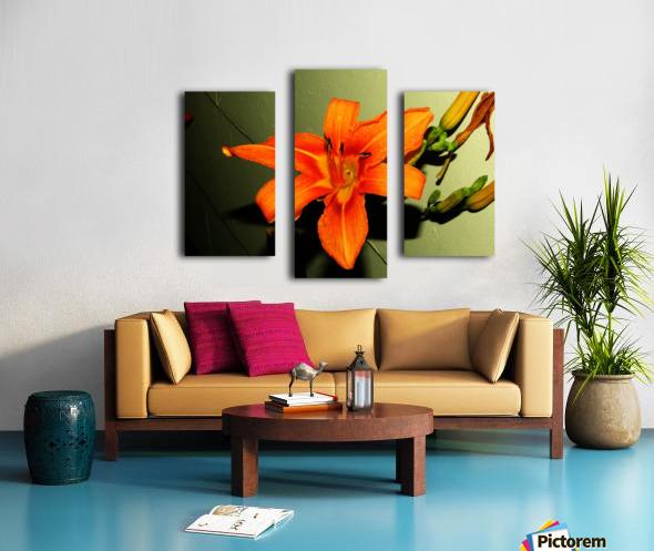 sofn-D014FA2F Canvas print