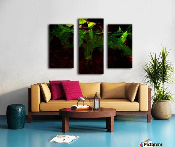 sofn-CA35DBE6 Canvas print