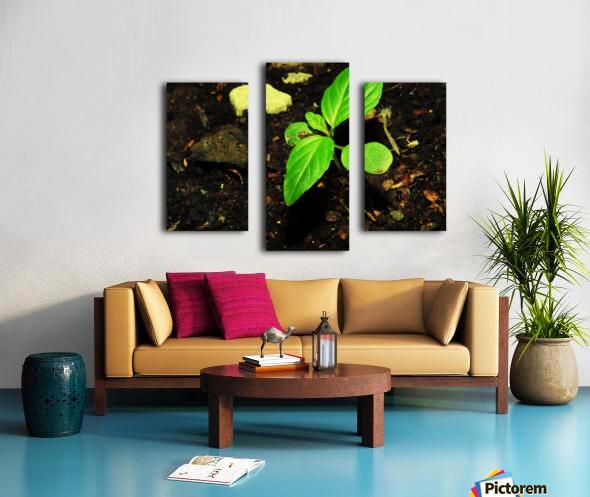 sofn-16FB61B2 Canvas print