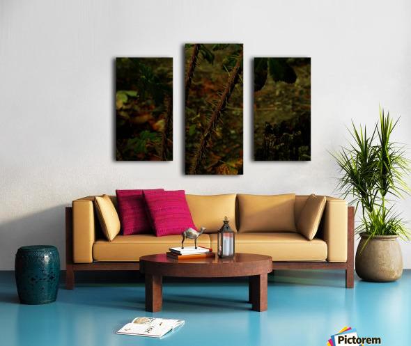 sofn-163F956E Canvas print