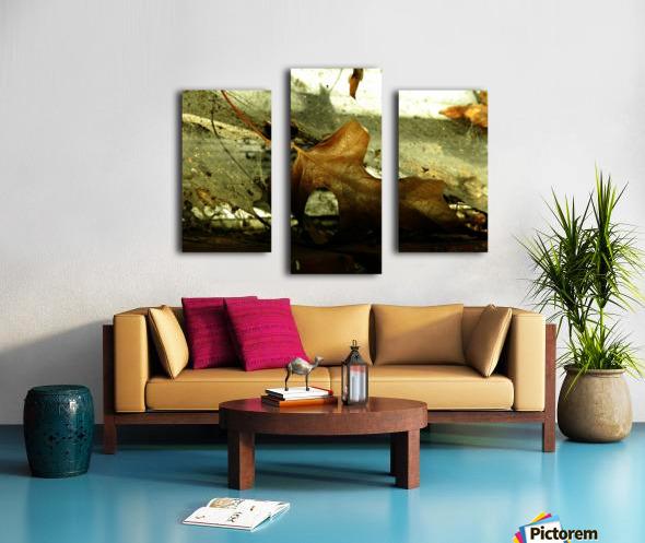 D (1) Canvas print