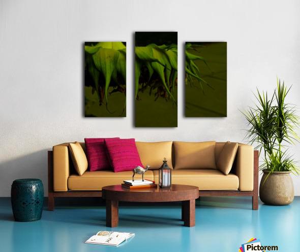D (13) Canvas print
