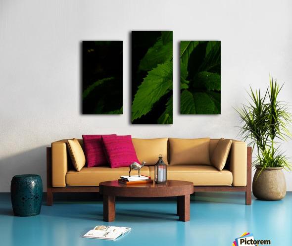 sofn-B03175AE Canvas print