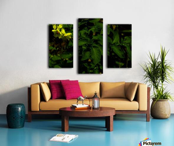 F (10) Canvas print