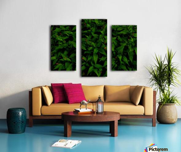 sofn-6D81AE31 Canvas print