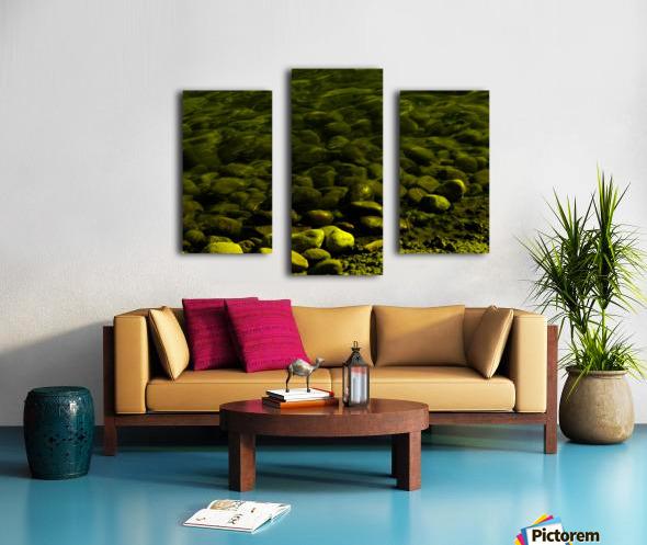 G (1) Canvas print