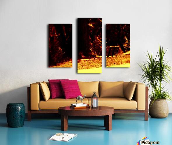 sofn-E4ED44CE Canvas print