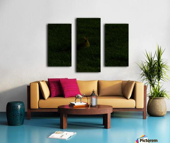 H (11) Canvas print