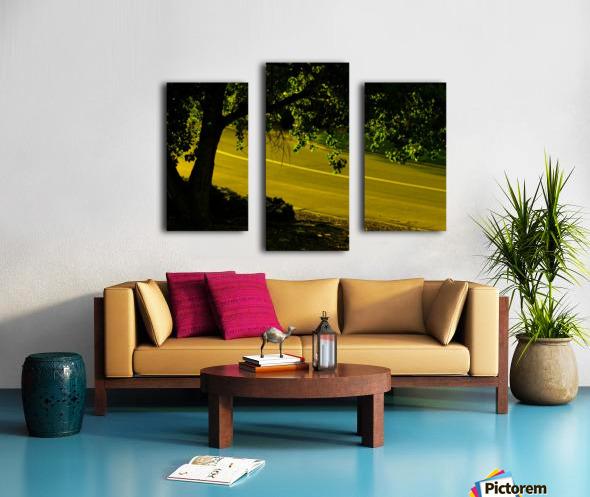 sofn-2B15499B Canvas print