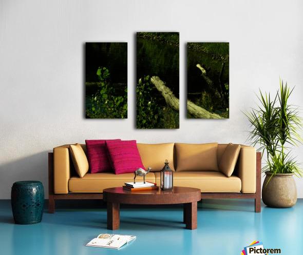 sofn-DC7396D7 Canvas print