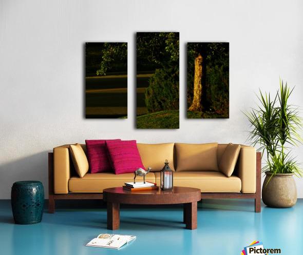 H (15) Canvas print