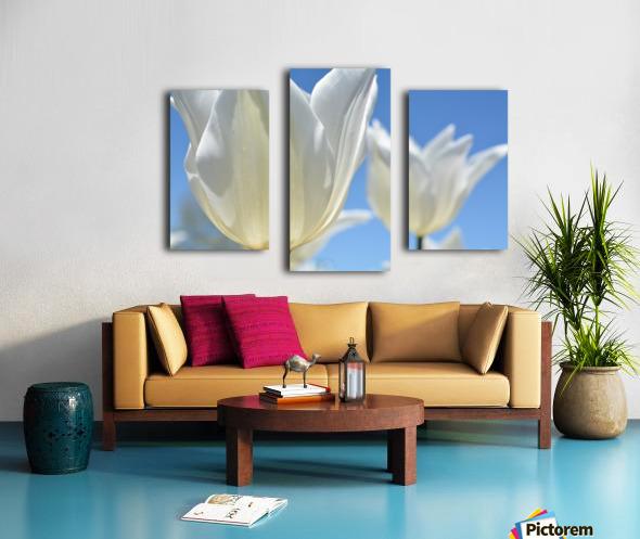 White Tulip Photograph Canvas print