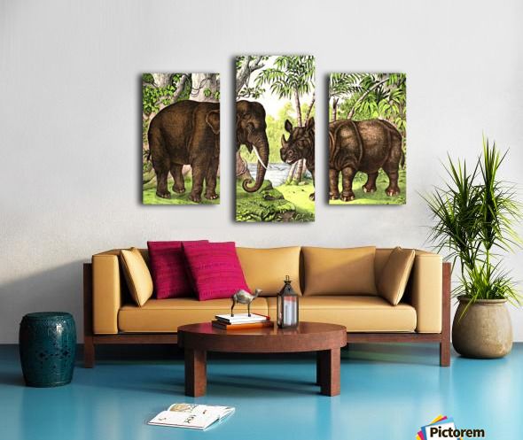 Elephant And Rhinoceros Canvas print