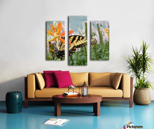 Butterfly On An Orange Flower Photograph Canvas print