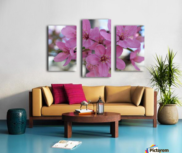 Pink Dogwood Photograph Canvas print