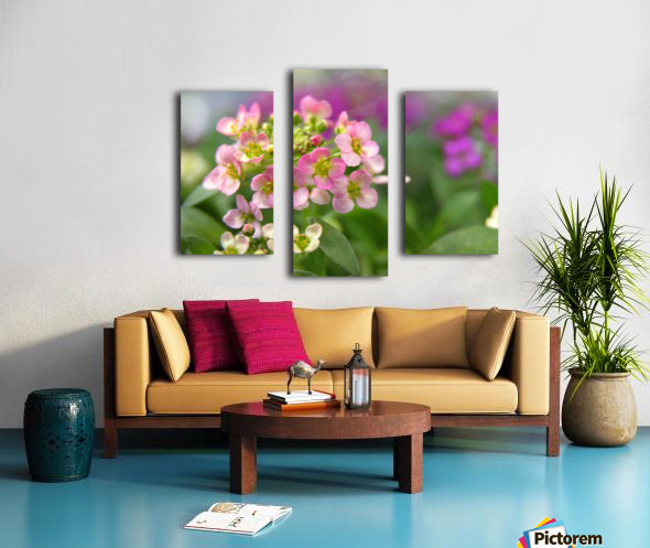 Small Pink Flowers Photography Canvas print