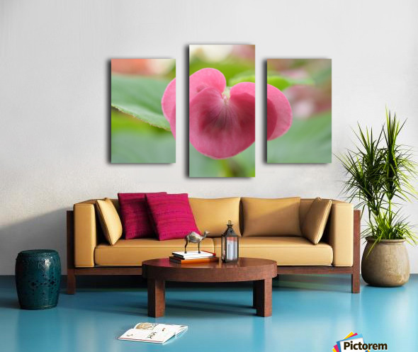 Heart Shape Pink Flower Photograph Canvas print