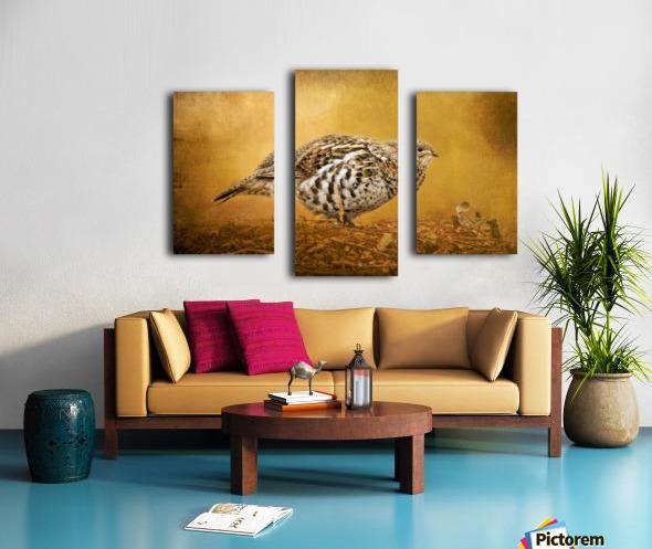 Female Ruffed Grouse Canvas print