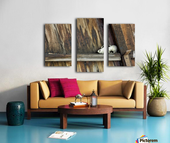 Bone and Wood Canvas print