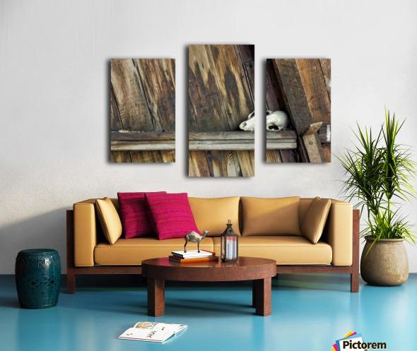Bone and Wood Canvas print
