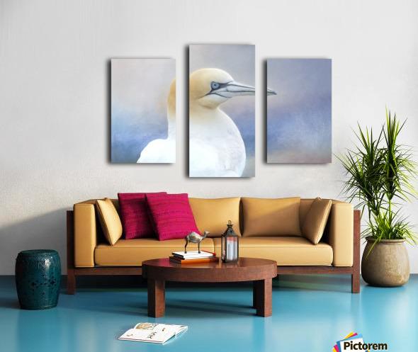 Northern Gannet Canvas print