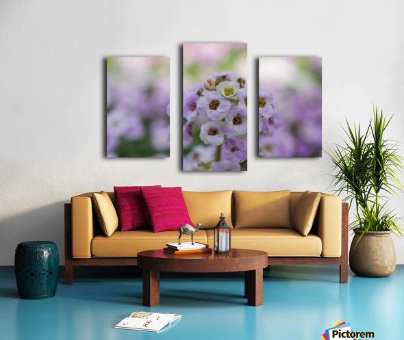 Small Purple White Flower Photograph Canvas print