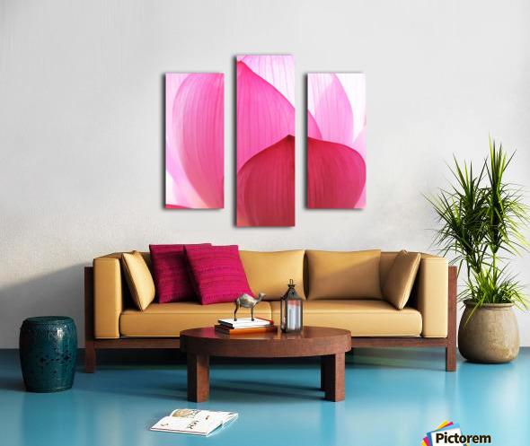 Lily Macro Canvas print
