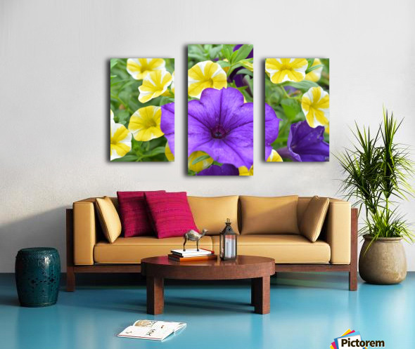 Beautiful Blue Flower In Yellow Flower Garden Photograph Canvas print