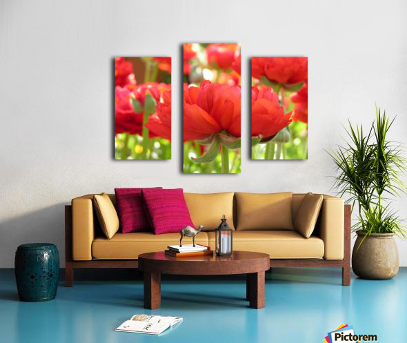 Red Rose Garden Photograph Canvas print