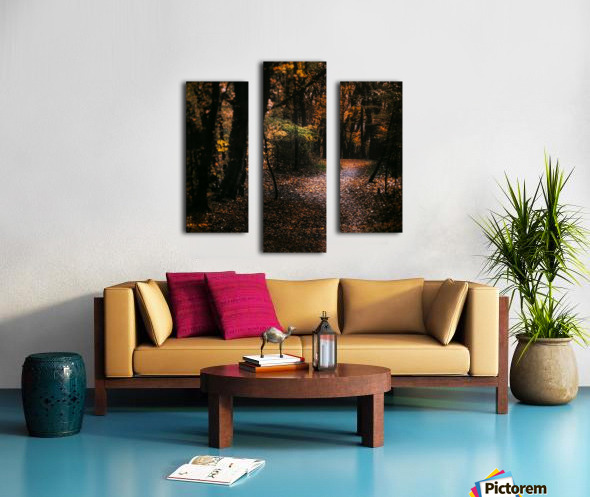 Forest 2_OSG Canvas print