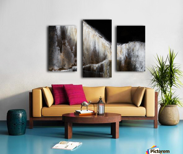 Arion Canvas print